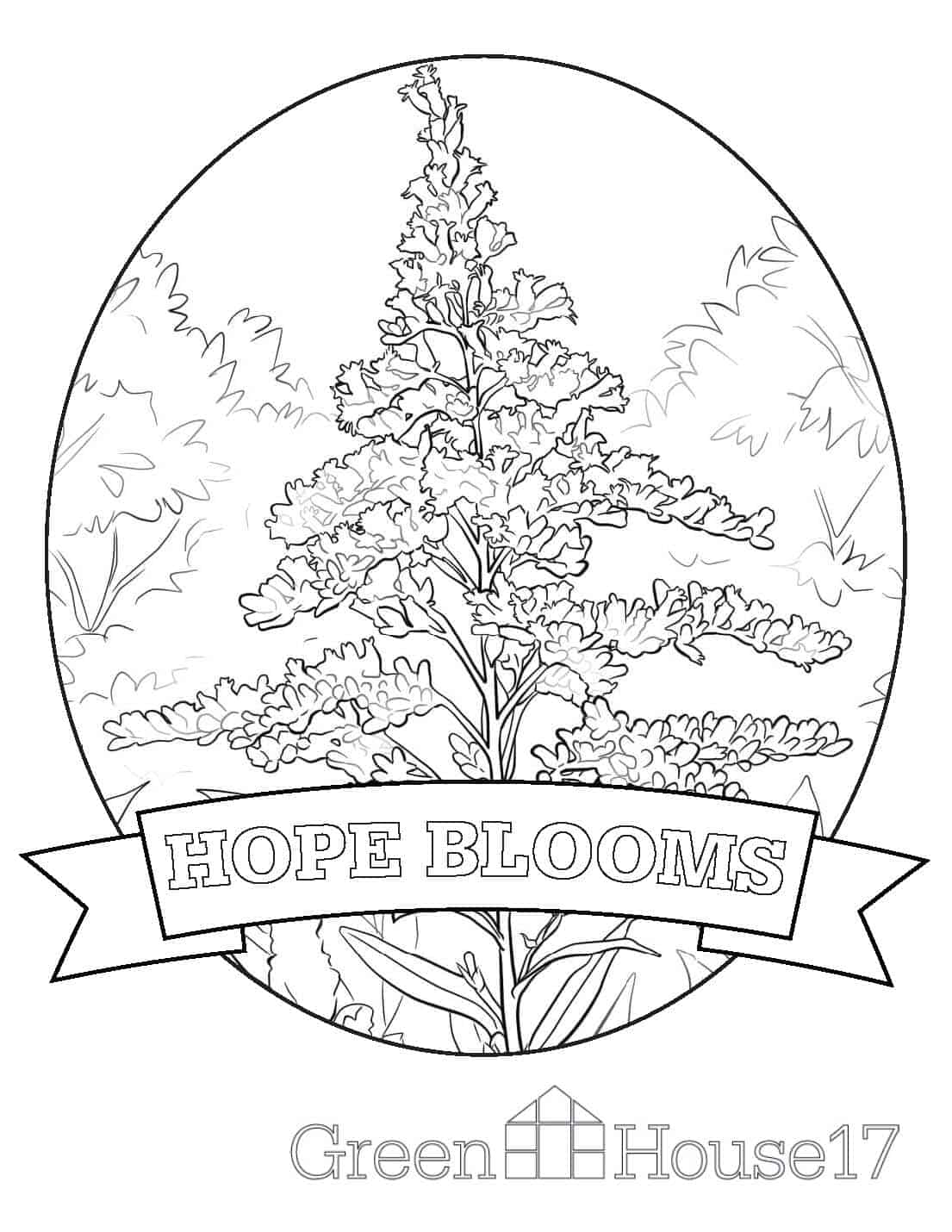 Coloring Pages GreenHouse17 Page 4 Hope Blooms