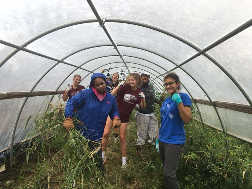 volunteers in a hoop house on the farm