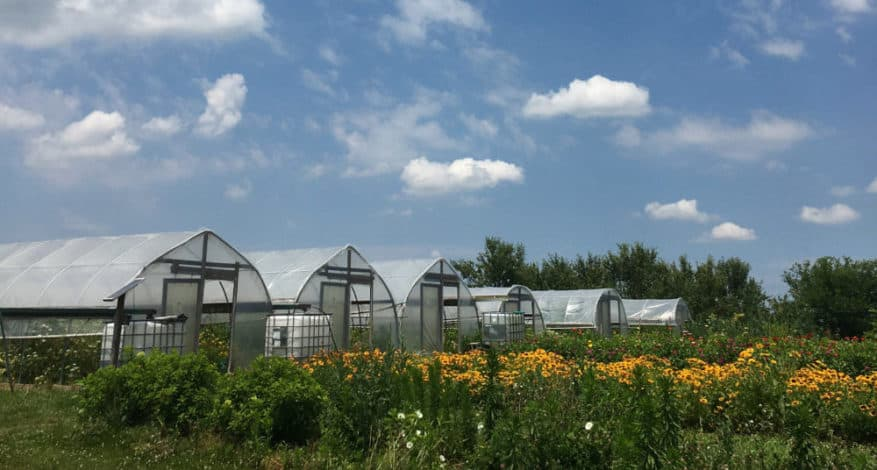 Farm at GreenHouse17