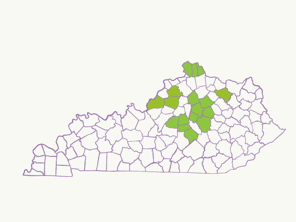 Map of where Handmade By Survivors products have been sold in KY